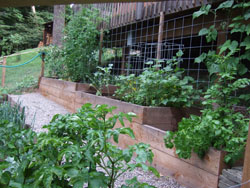 Terraced Gardens